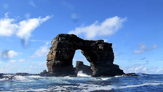 Galapagos-buceo-diving-darwin-isla