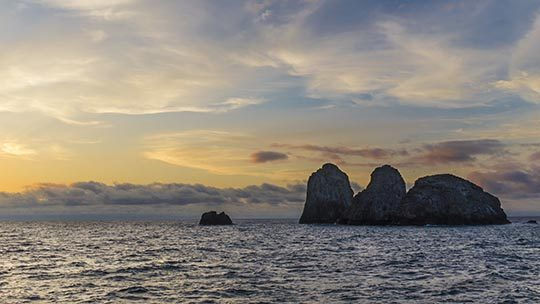 Malpelo-island-diving-colombia-los-mozqueteros
