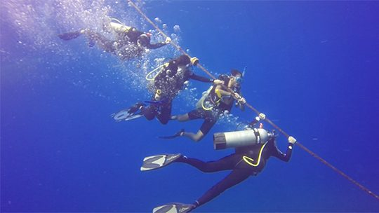 Providencia-safety-stop-buceo-diving-caribe