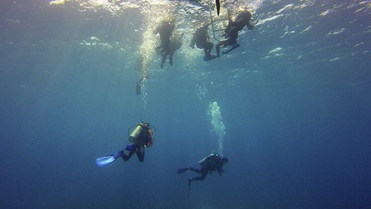 safety-stop-scuba-diving-belize-