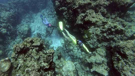 san-andres-freediving-apnea-colombia-island
